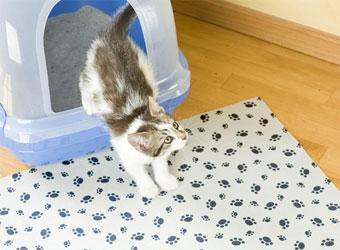 Cat Litter Mat Choose The Best One Fot Less Cleaning Up
