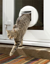 These days most animal doors are lockable so you can keep your cat in when you want to. & The Best Cat Door - For Your Cats Happiness And Your Convenience Pezcame.Com