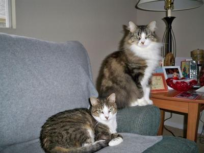 Nayla & Lucy