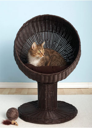 pretty design modern cat bed. Kitty Ball Wicker Cat Bed Beds For A Cool Nights Sleep
