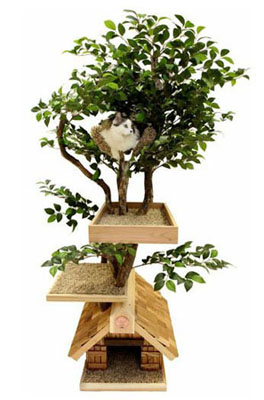 The Best Cat Trees And Cat Towers For Your Pets Health And