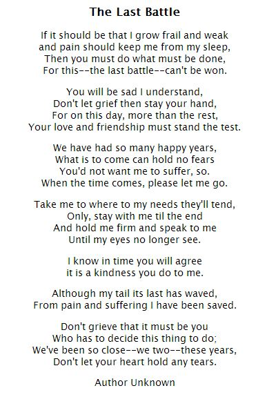 Losing A Father To Cancer Quotes: The Rainbow Bridge Story