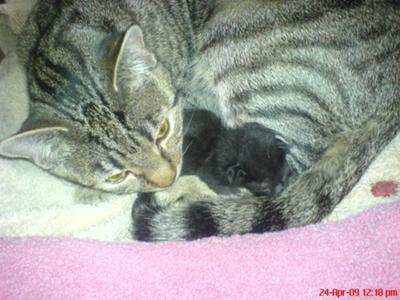 Mum + her baby