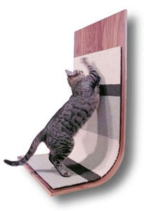 Cat Scratching Post Satisfy Your Kitty 39 S Instinct To Scratch